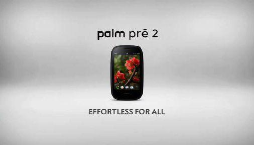 Palm_thumb